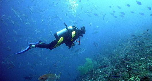 Plonge e sous marine 2 1